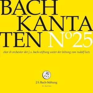 J.S.Bach-Stiftung St. Gallen CD 25 Lutz